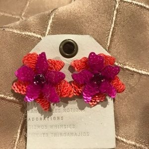 Anthropologie erring